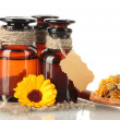 Medicine bottles and calendula, isolated on white — Stock Photo #13322838