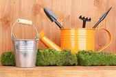 Verde musgo e regador com ferramentas de jardinagem em fundo de madeira — Fotografia Stock