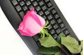 Pomysł randki online — Zdjęcie stockowe