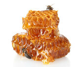 Sweet honeycomb with honey and bee, isolated on white — 图库照片