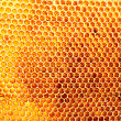 Stock Photo: Yellow beautiful honeycomb with honey, background