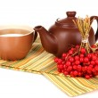 Tea with red viburnum isolated on white - Foto de Stock  
