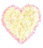 Uitstekende hart van wit roze bloemblaadjes omringd door roze bloemblaadjes geïsoleerd op wit — Stockfoto