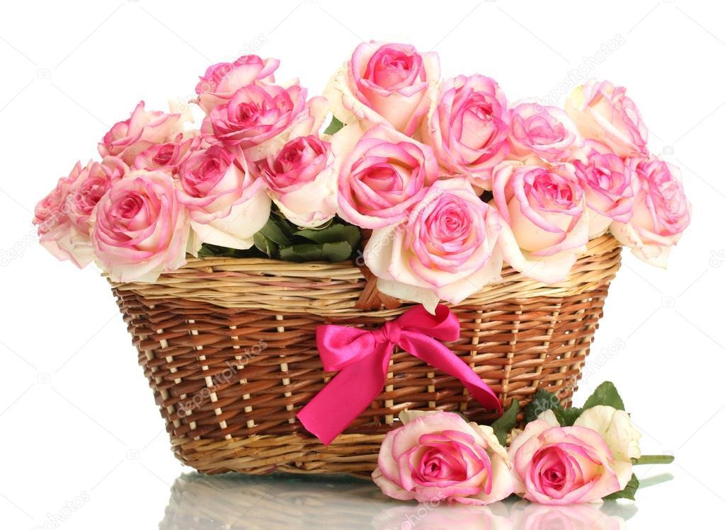 Белые розы 26   Фото цветов