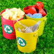 Recycling bins on green grass - Stock Photo
