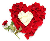 Beautiful heart of red and white rose petals with red rose isolated on white — Stock Photo