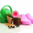 Watering can, galoshes, tools and plants in flowerpot isolated on white — Stock Photo #13485592