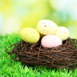 Colorful easter eggs on grass — Stock Photo #13486533
