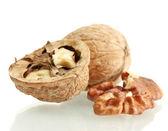 Walnuts, isolated on white — Stock Photo