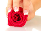 Red rose with woman — Stock Photo