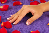 Woman's hand on purple terry towel, close-up — Stock Photo