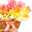 Beautiful tulips in basket isolated on white — Stock Photo #13508307