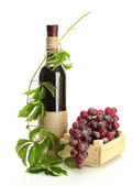 Bottle of wine with grapes isolated on white — Stock Photo