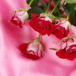 Stock Photo: Beautiful vinous roses on pink satin close-up