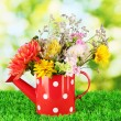 Red watering cwith white polka-dot with flowers on green background — Stock Photo #13541906