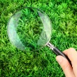 Magnifying glass in hand on green grass - Stock Photo