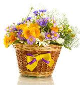 прекрасный букет из ярких полевых цветов в корзине, изолированные на белом — Стоковое фото