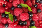 Ripe berries with mint, close up — Stock Photo