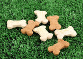 Dry bone-shaped food for dogs on green grass — Stock Photo