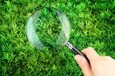 Magnifying glass in hand on green grass — Stock Photo