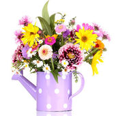 Beautiful bouquet of bright flowers in watering can isolated on white — Stock Photo