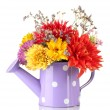 Stock Photo: Purple watering cwith white polka-dot with flowers isolated on white
