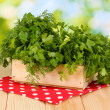 Wooden box with parsley and dill on wooden table on natural background — Stock Photo #13575383