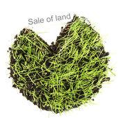 Grönt gräs med marken som begreppet markförsäljningen isolerad på vit — Stockfoto