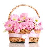 Bouquet di fiori di eustoma nel cesto, isolato su bianco — Foto Stock