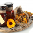 Medicine bottles and calendula, isolated on white — Stock Photo #13649295