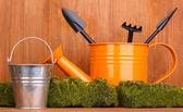 Verde musgo e regador com ferramentas de jardinagem em fundo de madeira — Foto Stock