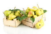 Juicy flavorful pears in boxes isolated on white — Stock Photo