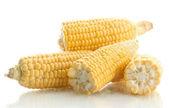 Fresh corn, isolated on white — Stock Photo