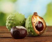Zelené kaštany na dřevěný stůl na zeleném pozadí — Stock fotografie