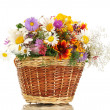 Beautiful bouquet of bright wildflowers in basket, isolated on white — Stock Photo #13650983