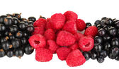 Fresh berries on white background close-up — Stock Photo