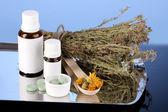 Flaschen von arzneimitteln und kräutern auf blauem hintergrund. konzept der homöopathie — Stockfoto