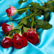 Постер, плакат: Beautiful vinous roses on blue satin close up