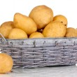 Ripe potatoes on basket isolated on white - Stock Photo