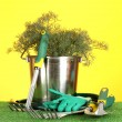 Garden tools on lawn on bright colorful background close-up - Стоковая фотография