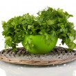Green pot with parsley and dill on wicker cradle isolated on white — Stock Photo