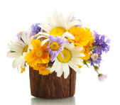 Beautiful bouquet of bright wildflowers in wooden flowerpot, isolated on w — Foto Stock