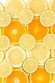 Orange lime och citron på nära håll — Stockfoto