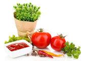 натюрморт томатов кетчуп и травы, изолированные на белом фоне — Стоковое фото