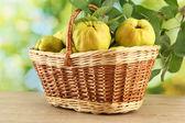 Doces marmelos com folhas no cesto, sobre fundo verde — Foto Stock