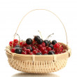 Ripe berries in basket isolated on white — Stock Photo #13729070