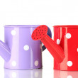 Purple and red watering cans with white polka-dot isolated on white — Stock Photo #13729552