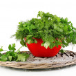 Red pot with parsley and dill on wicker cradle isolated on white — Stock Photo