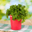 Red pot with parsley and dill on wooden table on natural background — Stock Photo