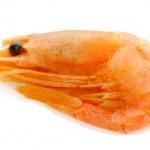 Boiled shrimp isolated on white — Stock Photo #13730555